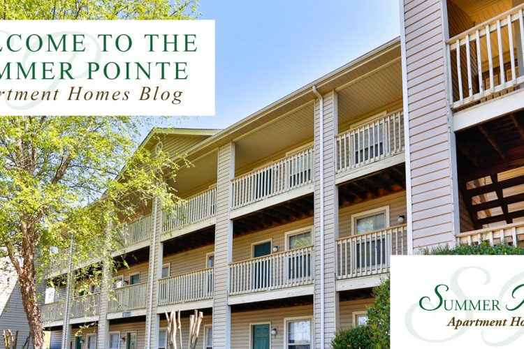 Welcome to the Summer Pointe Apartment Homes Blog
