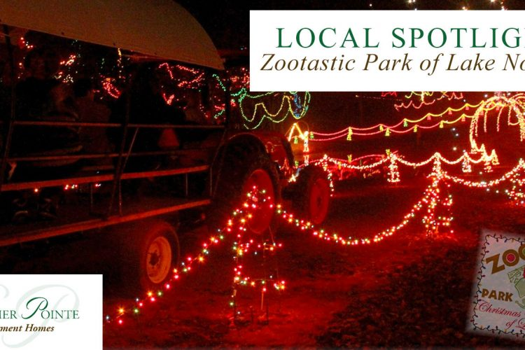 Local Spotlight: Zootastic Park of Lake Norman