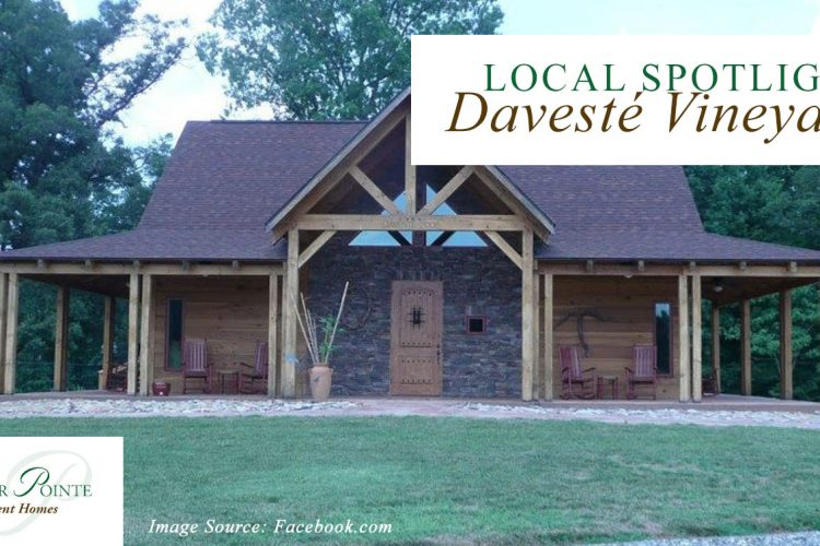 Local Spotlight: Davesté Vineyards