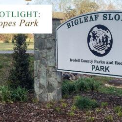 Bigleaf Slopes Park